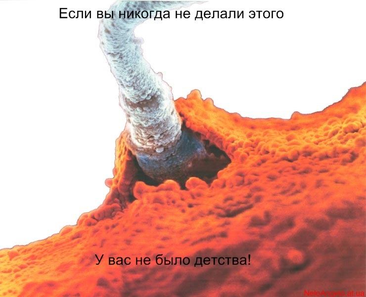 kakie-produkti-sposobstvuet-obrazovaniyu-spermi